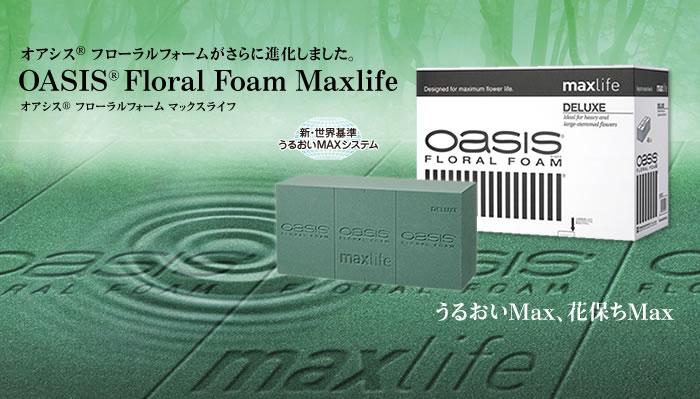 OASIS Floral Foam Maxlife